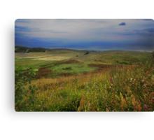 My land Canvas Print