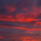 A Canadian Sunset......November 08 by Larry Llewellyn