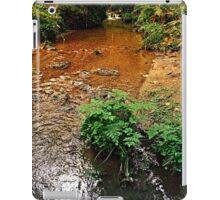 Little stream in autumn colors   landscape photography iPad Case/Skin