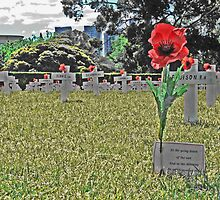 ANZAC day, In the 11th month, on the 11th day, at the 11th hour by Neil Mouat