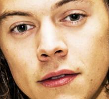 Harry Styles Softest Hair Sticker