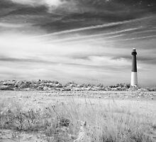 Barnegat Lighthouse by VLFatum