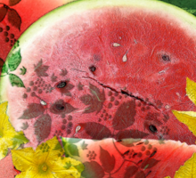 Juicy Watermelon from New Orleans Sticker