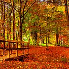 The Autumn Walk by doublevision