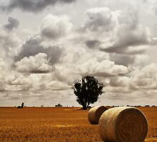 Urana by Darren Wright