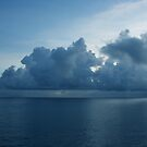 Blue Reflections by Jarede Schmetterer