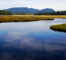 Acadia National Park by VLFatum