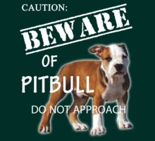 caution - beware of pitbull do not approach by hottehue