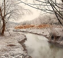 Icy Creek by Brent Craft