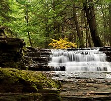 Soothing Waters Waterfall by Christina Rollo