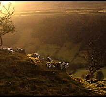 Light across the Dale by Terry Roberts