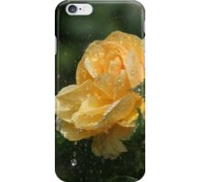 Yellow rose shower iPhone Case/Skin