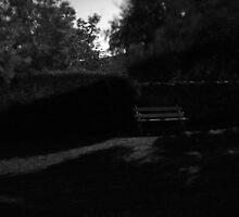 Moonlit bench by Gabriel Skoropada