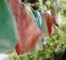 Tibetan Prayer Flags on Poma Shan by Bryan Turner