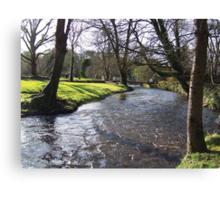 Blarney Castle - River Canvas Print