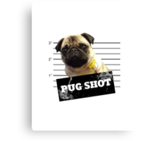Pug Shot Canvas Print