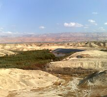Jordan river in front of Moav mountains. by zangi12
