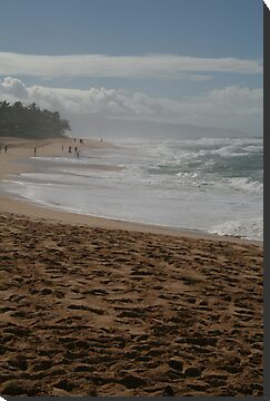 North Shore Waves by Jen Hendricks