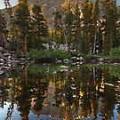 Basin Mountain Reflection by Nolan Nitschke