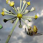 The last wasp by jesika