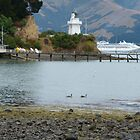 Akaroa for the day! by PhotosByG