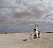 The Nullarbor by Elena Martinello