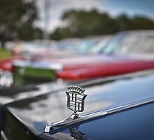 American Emblems 2998 by Clintpix