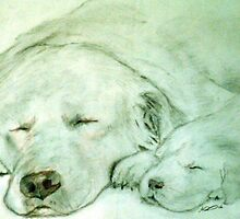 Let Sleeping Dogs Lye by andrew75