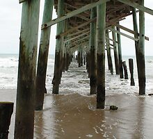 The Pier in Charleston, South Carolina by Rich Synowiec