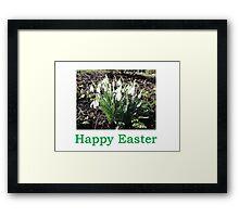SnowDrops (Easter) Framed Print