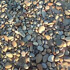 Beach Rocks by Vanessa k