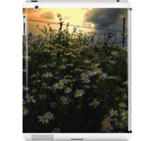 The Early Glow iPad Case/Skin
