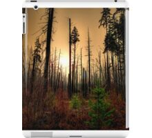 After The Fire iPad Case/Skin