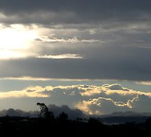 Summer Storm over Gold Coast Hinterland by Kathie Nichols