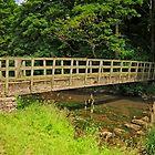 Gipsy Bank Bridge, Wolfscote Dale by Rod Johnson