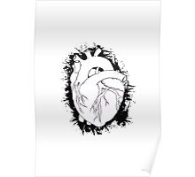 Anatomical Heart  With Black Poster