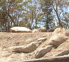 UNEARTHED. THESE ROCKS HAVE BEEN BLASTED OUT OF THE GROUND TO MAKE THE NEW CALDER FREEWAY,HARCOURT, CENTRAL VICTORIA. by leanimal