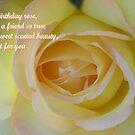 Yellow Birthday Rose by judygal