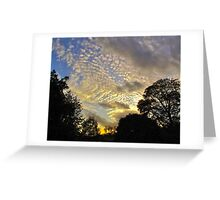 Evening sky, autumn (London) Greeting Card