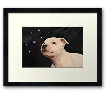 Staffy puppy!! Framed Print