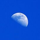 Mid day moon by flyfish70