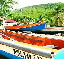 Boats in Martinique by mindfulmimi