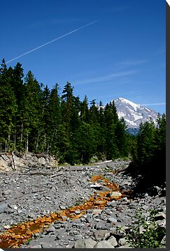 Mt Rainier by jfpictures