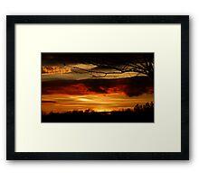Fabulous Nature Framed Print