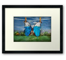 Butterfly - Morpho - I hate it when the colors run Framed Print