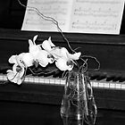 Piano in Black &amp; White with Orchid by Kristin Nichole Hamm