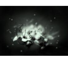 Andromeda Photographic Print