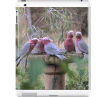 Galah's in the Garden. iPad Case/Skin