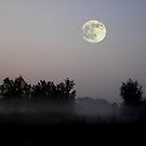 Early Morning Moon by Jarede Schmetterer