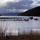 Loch Lomond by Jeremy Lavender Photography
